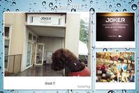 雨の日の過ごし方@JOKER Dog & Cat Avenue (二子玉川店) - shoot !!