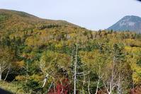釧路経由で根室~網走 予約なしの半島巡りドライブ - ノラニンジンの咲く庭
