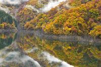 ニコン × 『風景写真』  第7回無料体験ツアー、参加者募集! 『待望の新機種!Nikon D850で撮る「錦秋の徳山湖」』  講師・星野佑佳 - 風景写真出版からのおしらせ