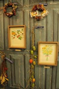 花も実も始まりました! - 北赤羽花屋ソレイユの日々の花