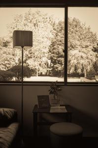 熟成された10月の窓辺 - Film&Gasoline