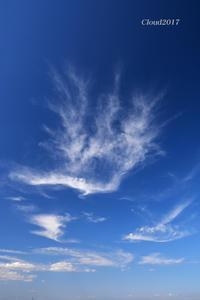 空の模様 - 写愛館