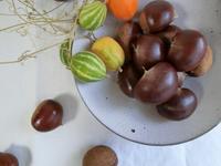 実りの秋を食卓に - 器と料理とおしゃべりと
