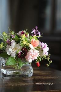 秋の小花たち - そのままでいいよ。。。