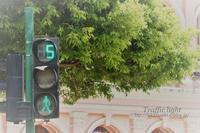 Traffic light - ★ひかるっち★の Happy spice ブログ