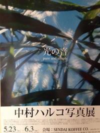 写真家紹介vol3 光の音 中村ハルコさん - 独断と偏見!勝手に写真家紹介ブログ