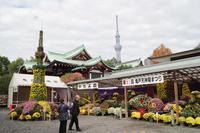 亀戸天神の七五三 - 出張撮影オレンジ公式ブログ