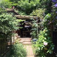 素敵カフェで台湾最終会議♪ - しっかり立って、希望の木