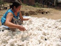 在廊日のお知らせ(ラオス 山の布展) - お手手  ・足踏みミシンと手縫いの布小物屋・