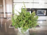 穂紫蘇の塩漬けと、秋の庭 - コロニヘーヴ