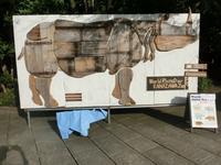 サイの糞ペーパー作り&サイの折り紙@金沢動物園 - ごきげんよう 犀たち