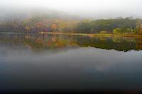 鏡池(戸隠高原) - くろちゃんの写真
