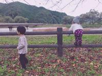 秋キャンプとママンライブとマリアルと - **arco diary**