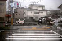 雨の月曜日 - ぴんの助でございます