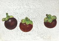 日本画「マンゴスチン」サムホール岩絵の具箔 - 黒川雅子のデッサン  BLOG版