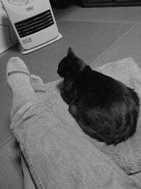 10℃以下 - スズキヨシカズ幻燈画室