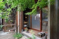 食堂前デッキの季節移り変わり - アトリエMアーキテクツの建築日記