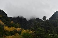 Moutain in autumnal colors 序 - Sauntering