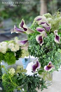 Bouquet de Photo 10月 #2 - Amour Tendre
