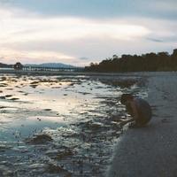 ランカウイ島旅行-32- - ayumilife with kate