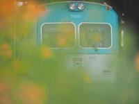 岳南鉄道を撮る - お寺や神社、古い町並み、鉄道、他色々の写真ブログ