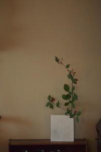 花器 - なづな雑記