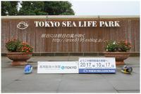 葛西臨海水族館 - 明日には明日の風が吹く