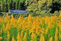 カナダの景色 - 今日も丹後鉄道