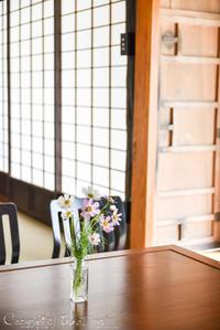 日本の原風景をリアルに体験:『但東ファームステイ』豊岡市但東町FANトリップ - IkukoDays