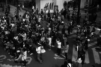 イベントの日 - Yoshi-A の写真の楽しみ