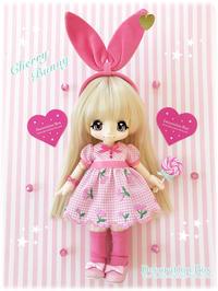 ☆Web Shop☆キキポップサイズ☆チェリー刺繍柄ドレスセットをUP☆ - Decoration Box