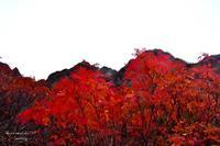 Moutain in autumnal colors 2 - Sauntering