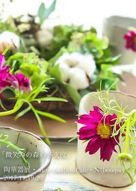 11月カフェでご一緒する N*bouquet - sucre vanillem  【シュクレ バニーム】