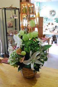 アレンジメントいろいろ - 花と暮らす店 木花 Mocca