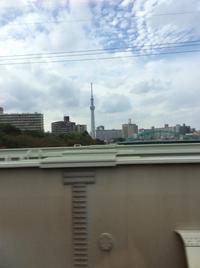 横浜に来ています - ハンドメイド  Atelier   maki