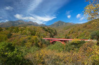 東沢大橋の紅葉 - オーナーズブログ・八ケ岳南麓は晴れています!