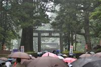 霧雨の東照宮 - 撮行記 2