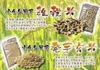 無農薬の『雑穀米』、『発芽玄米』命のみなぎる「美味しいお米」の稲刈りの様子(2017) - FLCパートナーズストア