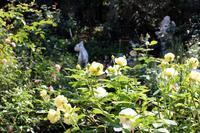 秋の1日 - バラとハーブのある暮らし Salon de Roses