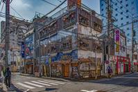 記憶の残像 2017年花の東京 -51東京都八王子市 - ある日ある時 拡大版