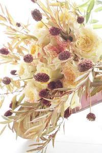ブーケ専科に新入生、お初の花材は薔薇「神楽」 - お花に囲まれて