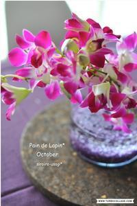 Pain de Lapin*  October - 白いうさぎ