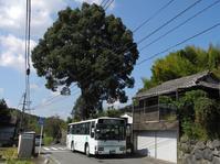 中組 - リンデンバス ~バス停とその先に~