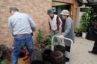明日から始まります!『秋のベゴニア展』! - 手柄山温室植物園ブログ 『山の上から花だより』