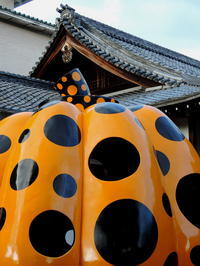 京都そぞろ歩き:おまけ - 日本庭園的生活