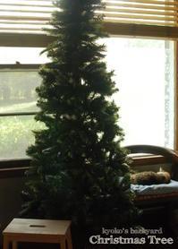 早くもクリスマス支度 - Kyoko's Backyard ~アメリカで田舎暮らし~