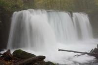 奥入瀬渓流の銚子大滝 - ふくろほーのつぶやき