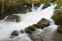 奥入瀬渓流阿修羅の流れ - ふくろほーのつぶやき