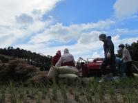脱穀 - Iターンで漁・猟師(直売有)の主人と対馬で田舎暮らし