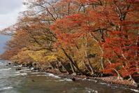 十和田湖の紅葉 - 信仙のブログ